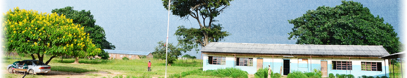Projects in Zambia
